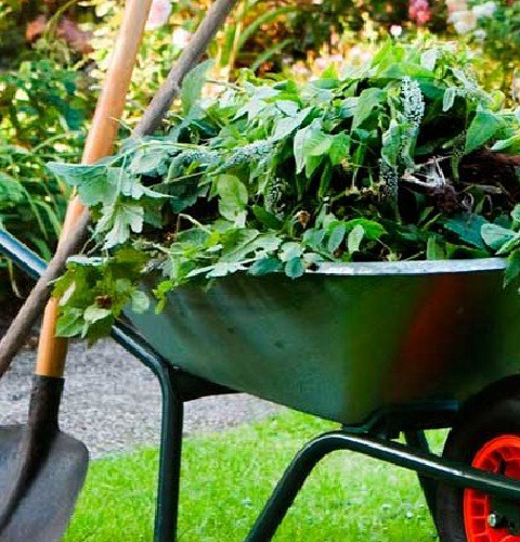 Gardening Clean Up Services from Precision Lawn Care